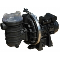 Sta-Rite 5P2R Pump